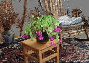 xmas-2015-cactus-and-chair-v1