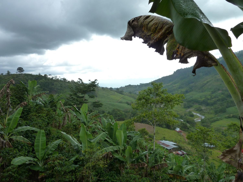 Costa_Rica_Photo